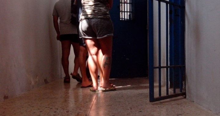 visita del carcere dell'asinara in catamarano
